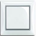 Белый, вставка серебристый металлик